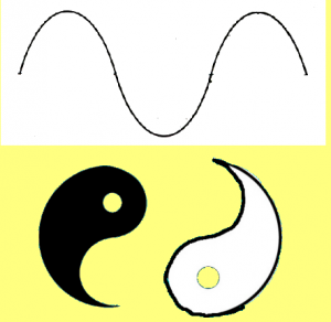 Secret_Of_Yin_Yang_Symbol_007-ScientificWaveYinYangHalves