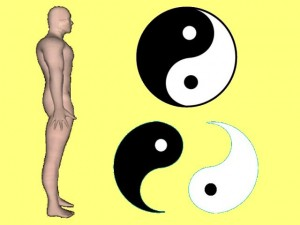 Secret_Of_Yin_Yang_Symbol_010-BodyYinYangCompare
