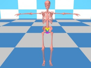 Tai_Chi_Bigger_Package-ExampleHumanSkeleton