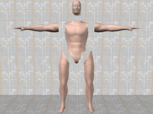 Tai_Chi_Full_Body_Power-ExtremitiesSeparatedFromTorso