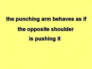 Tai_Chi_Full_Body_Power-ThePunchingArmBehaves
