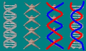 Theoretical_Models_Helpful_Tai_Chi-TheDNAView