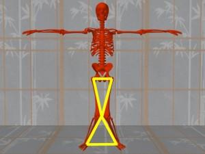 Knowledge_Of_Science_04-AlignedSkeletonLegTriangles