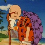 Master Roshi's Turtle Shell