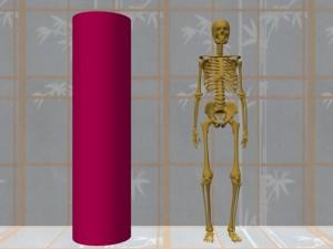 Single_Cylinder_Skeleton_Derivation-SingleCylinderSkeletonCompare