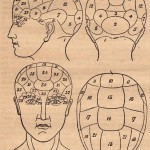 Phrenology Introduction