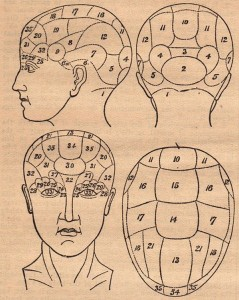 Phrenology_Introduction-ExampleHead