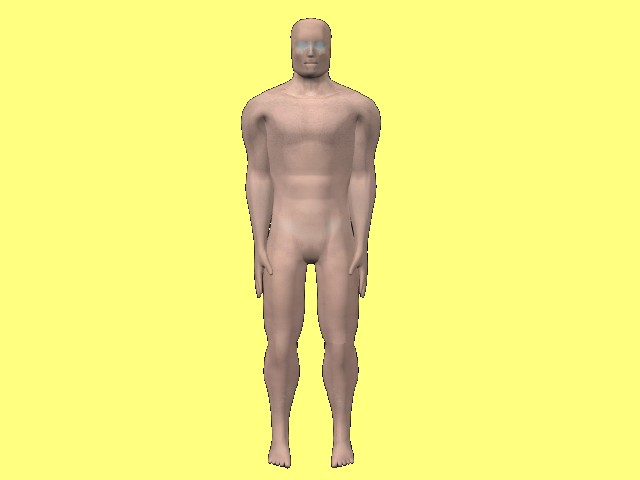 Six_Pointed_Wrapup-HumanBody