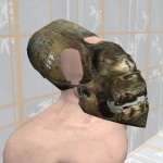 Proper Human Skull and Face Alignment