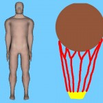 The Hot Air Balloon View Of The Human Body